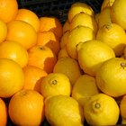 Oranges and lemons are some of nature's best cold fighters.