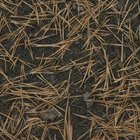 Pine needles lower soil pH.