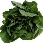 Spinach helps boost your immune system.