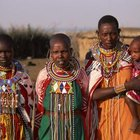 Cultural anthropology studies human societies, such as indigenous tribes.