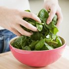 Spinach offers powerful phytochemicals and antioxidants.