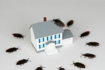 Protect your home from cockroaches with an electronic cockroach killer.