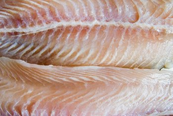 Pollack fillets have good nutritional value.