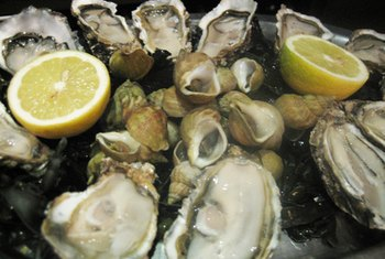 Oysters are rich in omega-3 fatty acids.