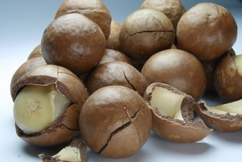 Macadamia nuts contain more manganese, but less vitamin E and folate, than pistachios.