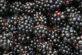 Include berries in your high-fiber diet.