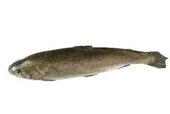 Trout and other fish are a good source of vitamin B-12.
