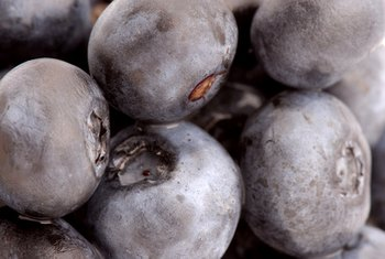 Blueberries have many health benefits.
