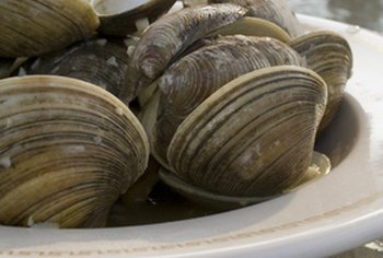 Clams supply a significant amount of vitamin B-12.