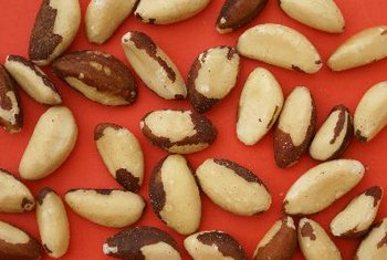 Brazil nuts only grow in the Amazon rainforest.