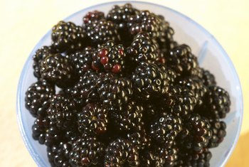 Blackberries are high in soluble fiber and can help lower your blood sugar.