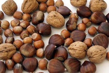 Nuts are an excellent source of protein and healthy fats.