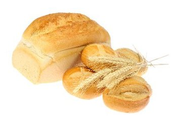 Wheat is the major source of gluten in the American diet.
