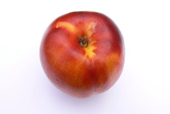 A nectarine supplies about 1.5 grams of protein.