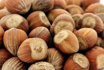 Hazelnuts are a good source of quality protein.