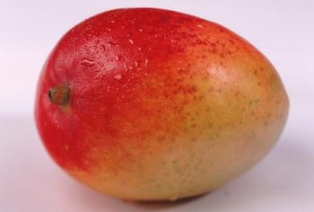 Mango fruits are 2 to 9 inches long and weigh about 8 to 24 ounces.