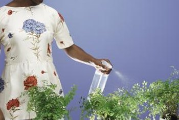 Many safer miticides can be applied to houseplants with a spray bottle.