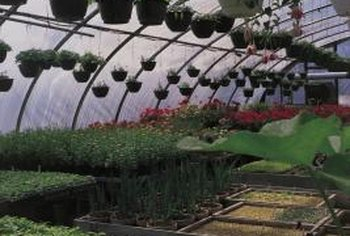UV-blocking greenhouse film is lightweight, flexible and strong.