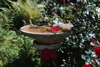 Add an artful touch to your garden by converting a birdbath into a fountain.