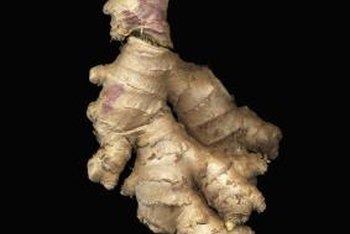 Plant a ginger root from the store to grow a ginger plant.