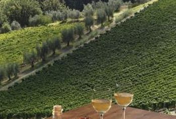 Italian landscapes serve as inspiration for a vineyard-themed kitchen.