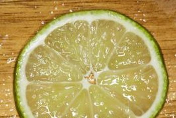 Germinating sweet lime seeds uses the same procedure as any citrus seed.