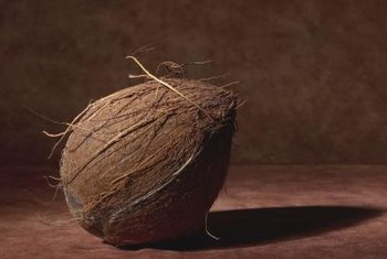 Coconut fiber is also called cocopeat or coir.