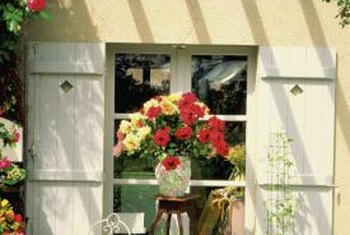 A bougainvillea can be trained to grow over a window or be pruned to an espalier shape.