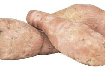 "Sweet potatoes are often referred to as ""yams,"" though true yams belong to the genus Dioscorea."