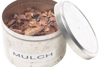 Mulch can be both organic and inorganic.