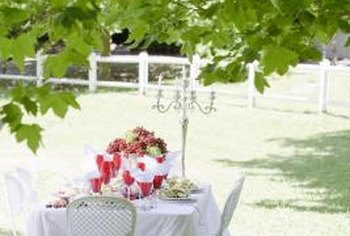 Shady parts of a yard, if well-maintained, are ideal for activities like picnicking.