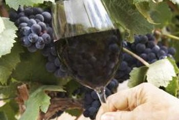 Killing grapevines is often the best solution when vines are unhealthy or out of control.