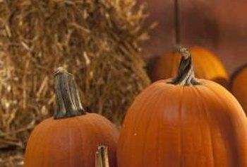 Offer party guests a selection of pumpkins in a variety of sizes and shapes.