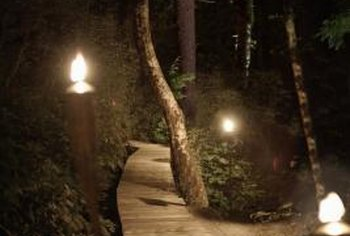 Create spectacular effects with landscape lighting.