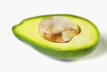 Fiber from avocados supports digestion.