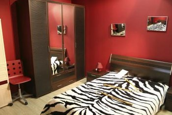 Bold colors make a striking contrast with a classic black-and-white zebra print.
