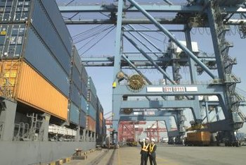 A cargo surveyor consults on the loading and unloading of a ship's cargo.
