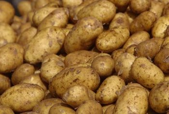 Plant 2 pounds of potatoes to harvest up to 50 pounds.