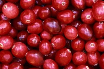 Cranberries get their red color from powerful plant chemicals called proanthocyanidins.