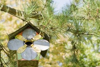 Birdhouses are exposed to the elements on a daily basis.