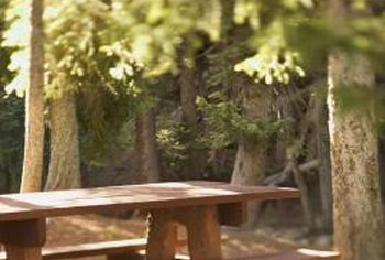 Move your table away from pine trees to avoid dripping pine sap.