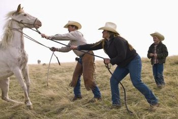 "Agricultural animal caretakers are sometimes called ""ranch hands."""
