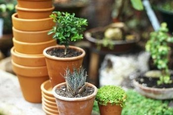 Cleaning and storing outdoor planters helps prepare the garden for winter.