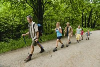 Walking with poles will expend more energy and help you to lose belly fat.