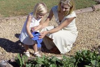 Planting a home garden allows you to plant healthy, nutrient-rich vegetables your family enjoys.