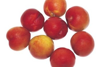 A nectarine tree will bear fruit if you plant it alone.