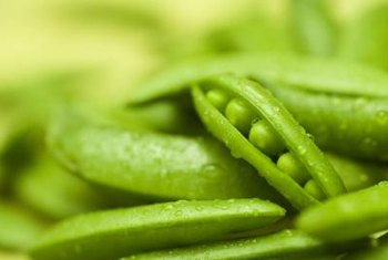 Maintain the pea pods' freshness by storing them properly until ready to use.