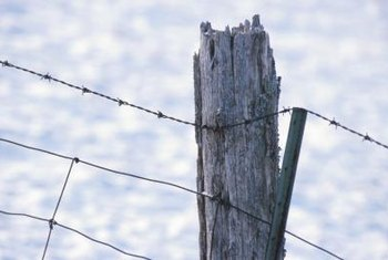 Any type of fencing mounts to wooden fence posts.