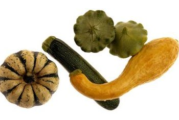 Squash plants come in many shapes, sizes and colors.