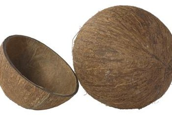 Coconut coir is sold in various consitencies, from fine coir dust to a more bark-like mixture.